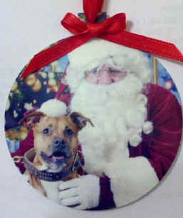 Copy (2) of 2011 santa dog2.jpg (41269 bytes)