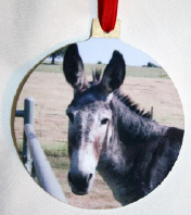 Copy of Ornament Donkey.png (468746 bytes)
