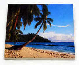 "Hardboard Photo Tile - Gloss Finish, 4-1/4"" x 4-1/4""  Personal Message & Graphics included"